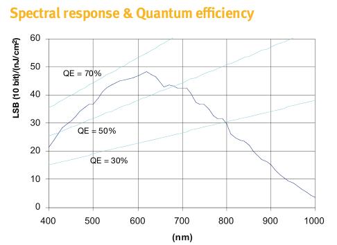 Sprawność kwantowa matrycy EV76C560